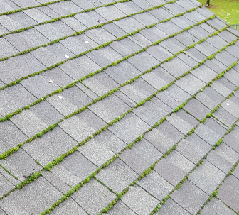 Roof Repair & Power Washing Vancouver WA - Grant Roofing & Pressure Washing  - image-content-moss